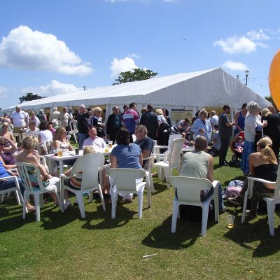 Hanburys-Fish-and-Chips-on-the-Downs-Music-Festival-web